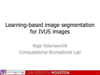 Learning-based image segmentation for IVUS images