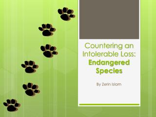 Countering an Intolerable Loss:  Endangered Species