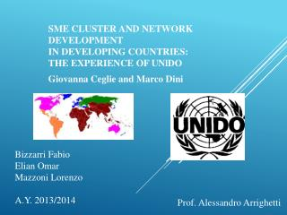 SME CLUSTER AND NETWORK DEVELOPMENT IN DEVELOPING COUNTRIES: THE EXPERIENCE OF  UNlDO