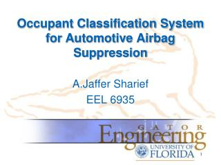 Occupant Classification System for Automotive Airbag Suppression
