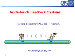 Multi-bunch Feedback Systems
