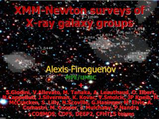 XMM-Newton surveys of  X-ray galaxy groups
