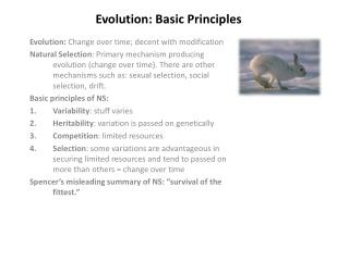 Evolution: Basic Principles