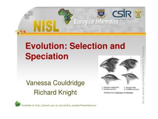 Evolution: Selection and Speciation