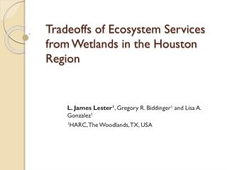 Tradeoffs of  Ecosystem Services from Wetlands in the Houston Region