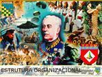 Estrutura Organizacional do COTER