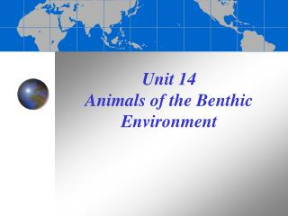 Unit 14 Animals of the Benthic Environment