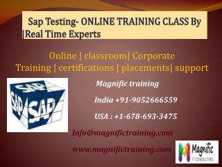 Sap Testing- ONLINE TRAINING CLASS By - Real Time Experts