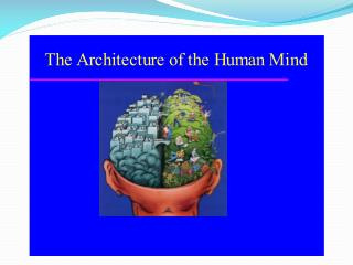 Hemispheres of the Brain