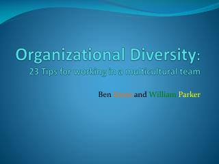 Organizational Diversity : 23 Tips for working in a multicultural team