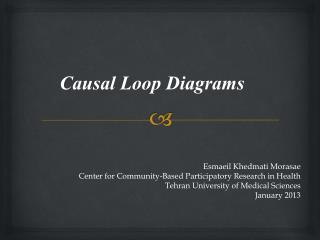 Causal Loop  D iagrams
