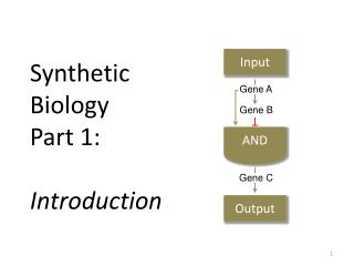 Synthetic  Biology  Part 1:  Introduction