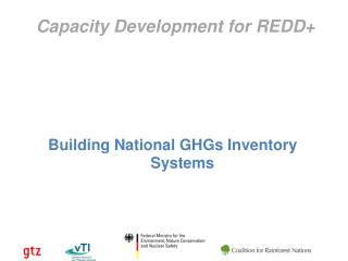 Capacity Development for REDD+