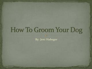 How To Groom Your Dog