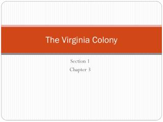 The Virginia Colony