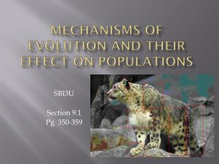 Mechanisms of evolution and their effect on populations