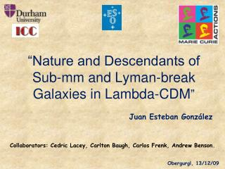 """Nature and Descendants of Sub-mm and Lyman-break Galaxies in Lambda-CDM """