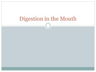 Digestion in the Mouth