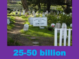 25-50 billion