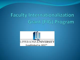 Faculty Internationalization Grant (FIG) Program