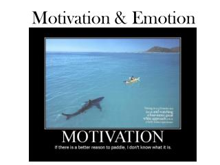 Motivation & Emotion
