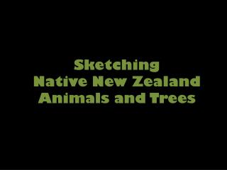 Sketching Native New Zealand  Animals and Trees