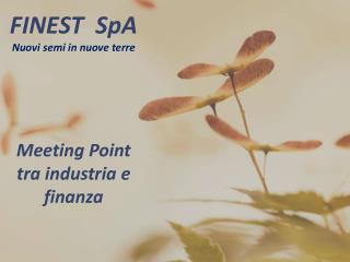 FINEST  SpA  Nuovi semi in nuove terre Meeting Point tra industria e finanza
