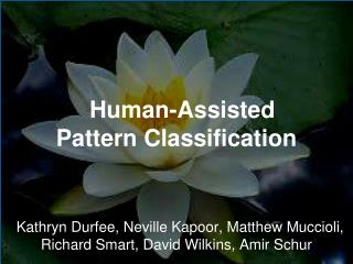 Human - Assisted Pattern  Classification