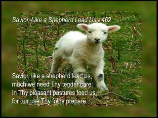 Savior, like a shepherd lead us ,