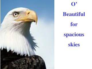 O'  Beautiful  for  spacious  skies