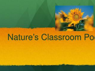 Nature's Classroom Poetry Unit