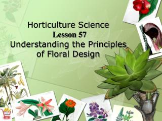 Horticulture Science Lesson 57 Understanding the Principles of Floral Design