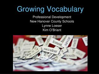 Growing Vocabulary