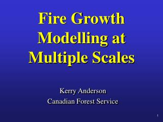 Fire Growth Modelling at Multiple Scales