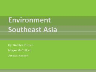 Environment Southeast  Asia