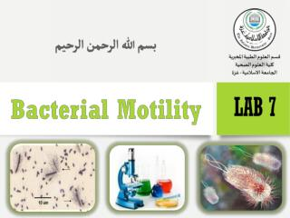 The ability of an organism to move by itself is called motility.