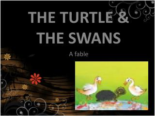 THE TURTLE & THE SWAN