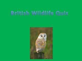 British Wildlife Quiz