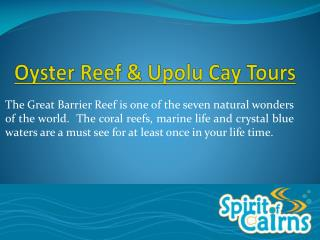 Oyster Reef and Upolu Cay Day Tours