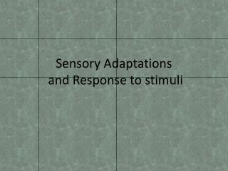 Sensory Adaptations  and Response to stimuli