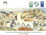 Conservation and Sustainable Use of Medicinal Plants in Arid and Semi-Arid Ecosystems of Egypt