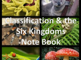Classification & the Six Kingdoms Note Book