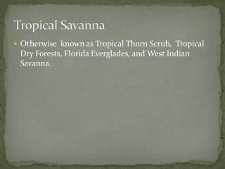 Tropical Savanna