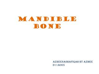 Mandible bone