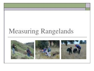 Measuring Rangelands