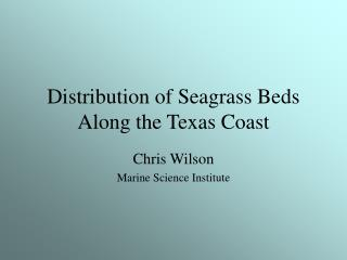 Distribution of Seagrass Beds Along the Texas Coast