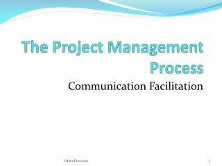 The Project Management Process