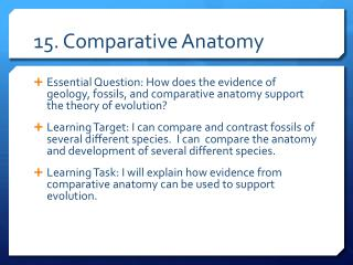 15. Comparative Anatomy