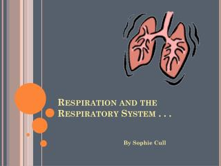 Respiration and the Respiratory System . . .