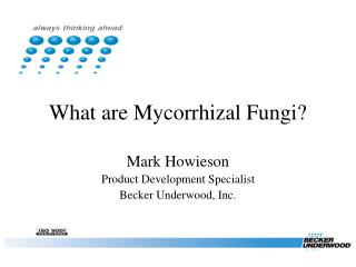 What are Mycorrhizal Fungi?